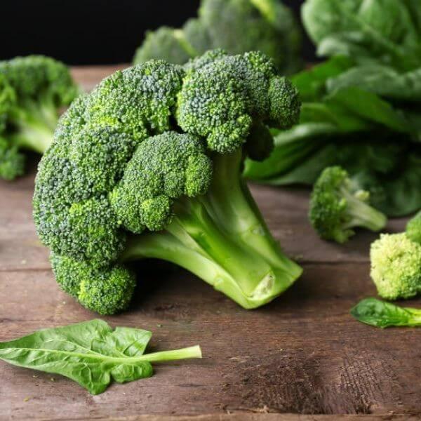 บร็อคโคลี่ broccoli