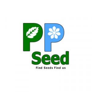 PP Seed